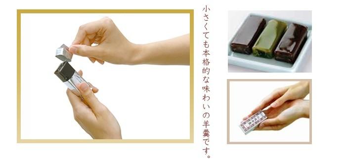 kogataogiyoukan_top022
