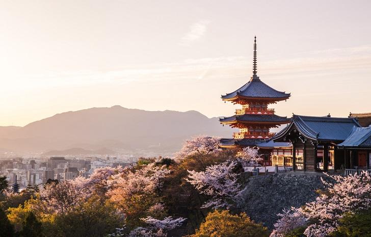 京都でお土産屋さんを探すならこ...